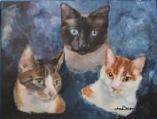 Custom Oil Painting Pet Portrait Cats Siamese Calico White and Yellow Orange Tabby